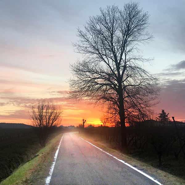 La via dei Cuori Patrizia Cristoferi